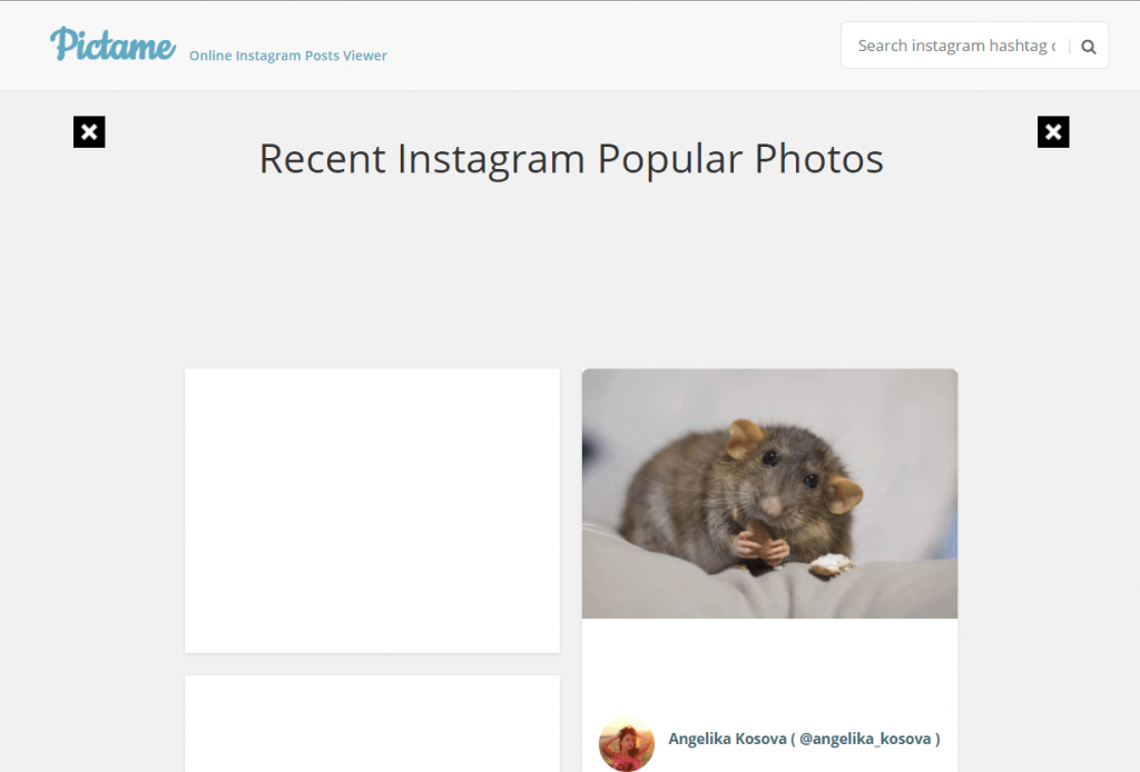 pictame instagram viewer